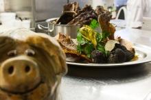 Unser Trüffelschwein hat italienischen Sommertrüffel in Heringsdorf gefunden
